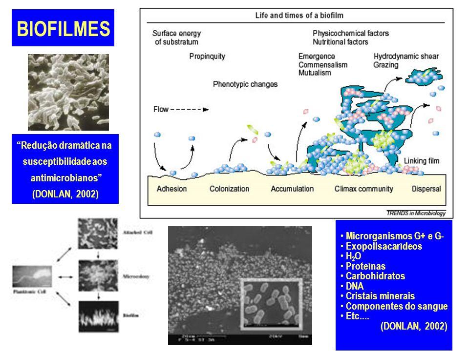 BIOFILMES Redução dramática na susceptibilidade aos antimicrobianos