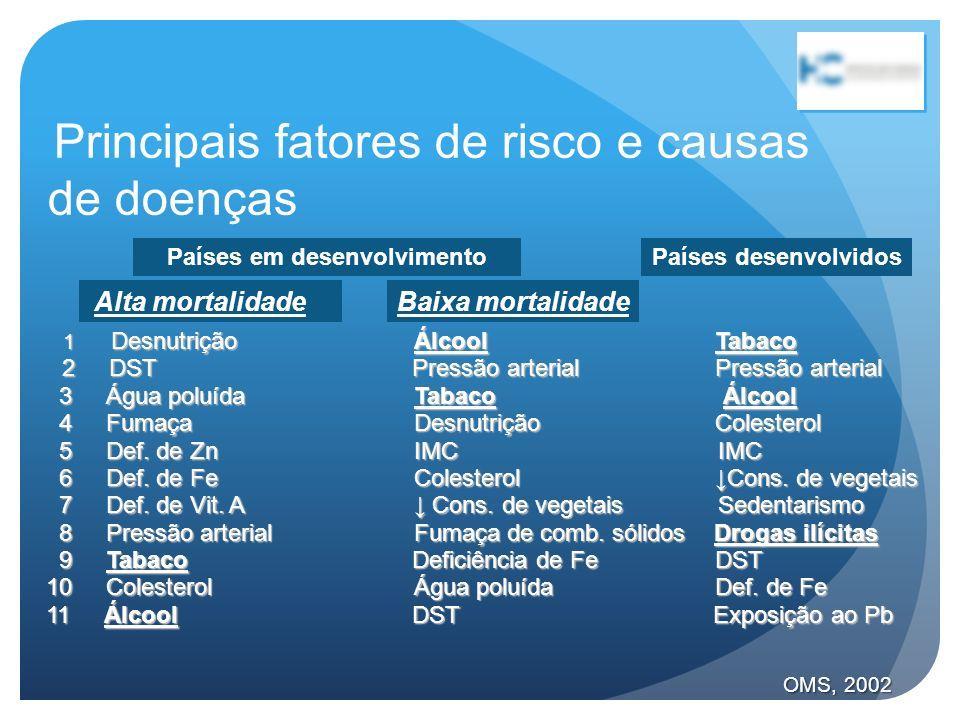 Principais fatores de risco e causas de doenças