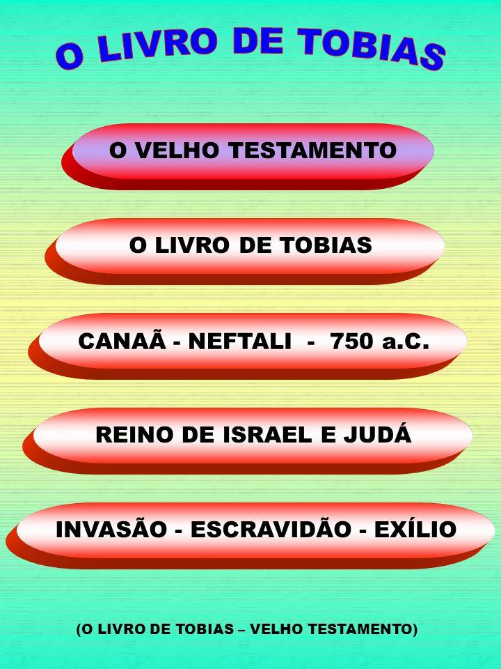 INVASÃO - ESCRAVIDÃO - EXÍLIO