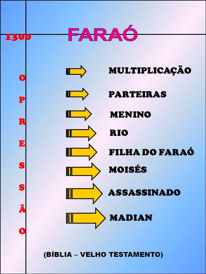 FARAÓ 1300 FARAÓ E S PARTEIRAS MULTIPLICAÇÃO C O R A P V I PARTEIRAS R