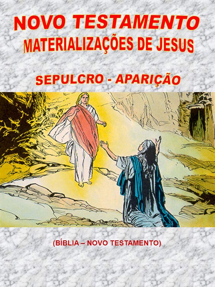 MATERIALIZAÇÕES DE JESUS