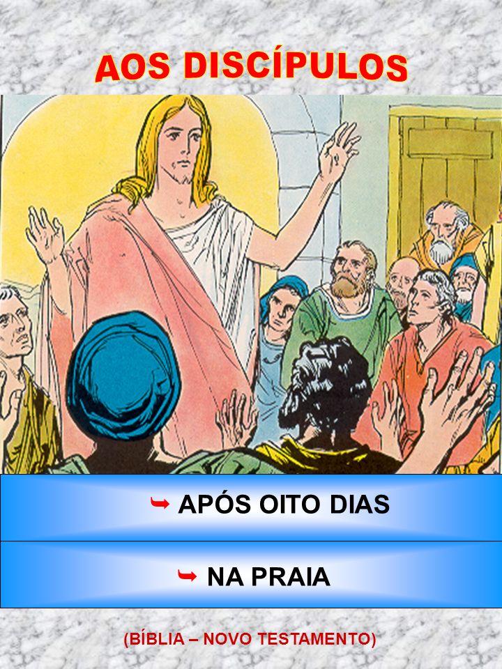 AOS DISCÍPULOS  APÓS OITO DIAS  NA PRAIA (BÍBLIA – NOVO TESTAMENTO)