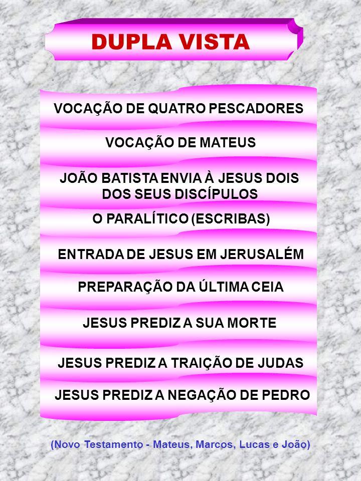 DUPLA VISTA VOCAÇÃO DE QUATRO PESCADORES VOCAÇÃO DE MATEUS