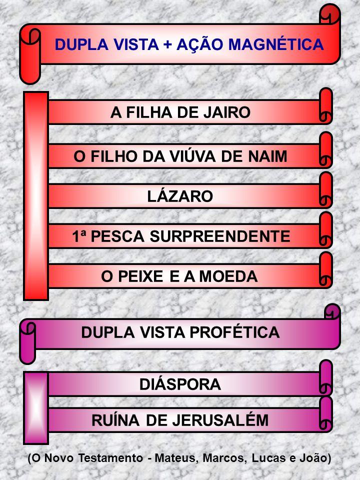 DUPLA VISTA + AÇÃO MAGNÉTICA
