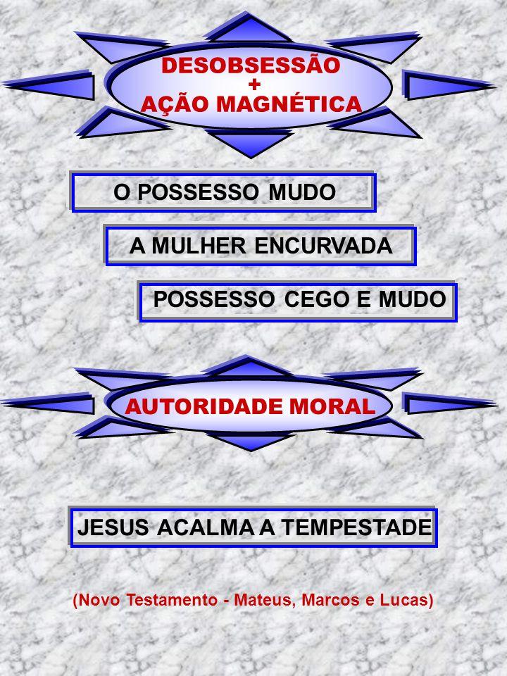 JESUS ACALMA A TEMPESTADE (Novo Testamento - Mateus, Marcos e Lucas)
