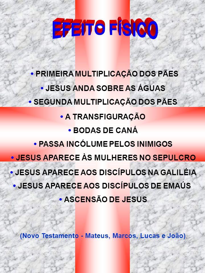 EFEITO FÍSICO  PRIMEIRA MULTIPLICAÇÃO DOS PÃES