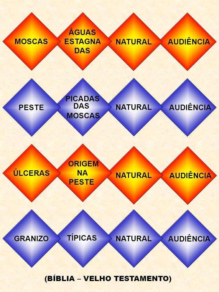 MOSCAS ÁGUAS ESTAGNA DAS NATURAL AUDIÊNCIA PESTE NATURAL AUDIÊNCIA