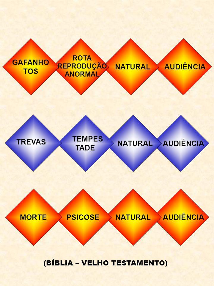 GAFANHO TOS NATURAL AUDIÊNCIA TEMPES TADE NATURAL AUDIÊNCIA TREVAS