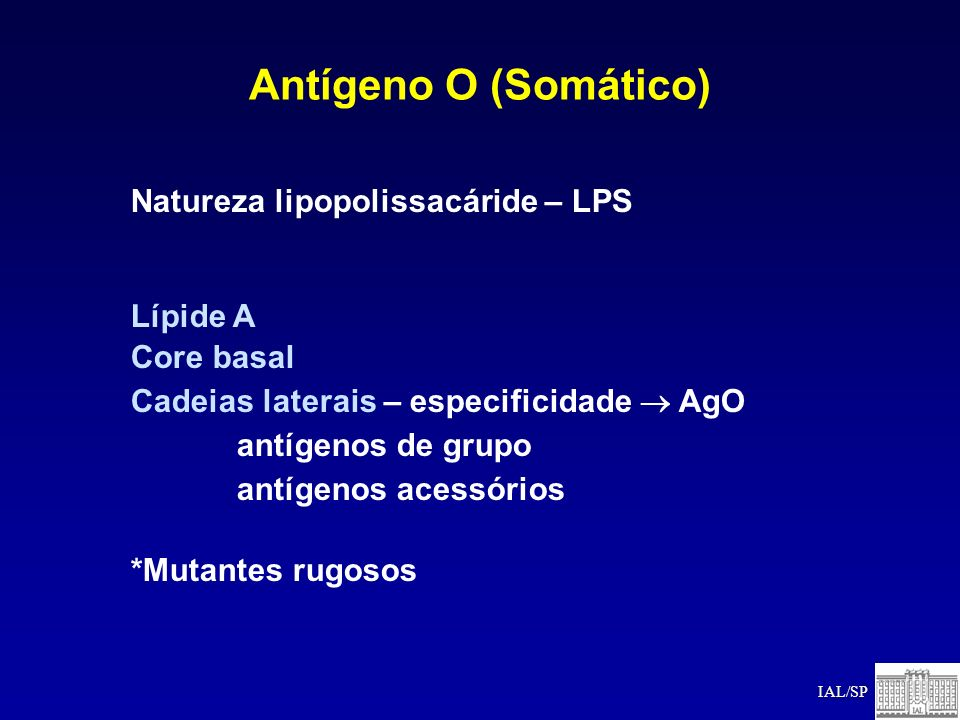 Antígeno O (Somático) Natureza lipopolissacáride – LPS Lípide A