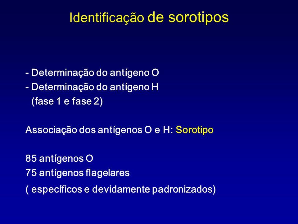 Identificação de sorotipos