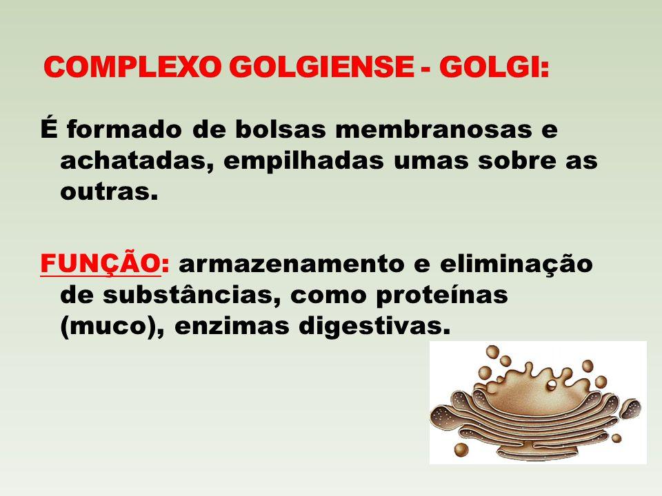 COMPLEXO GOLGIENSE - GOLGI:
