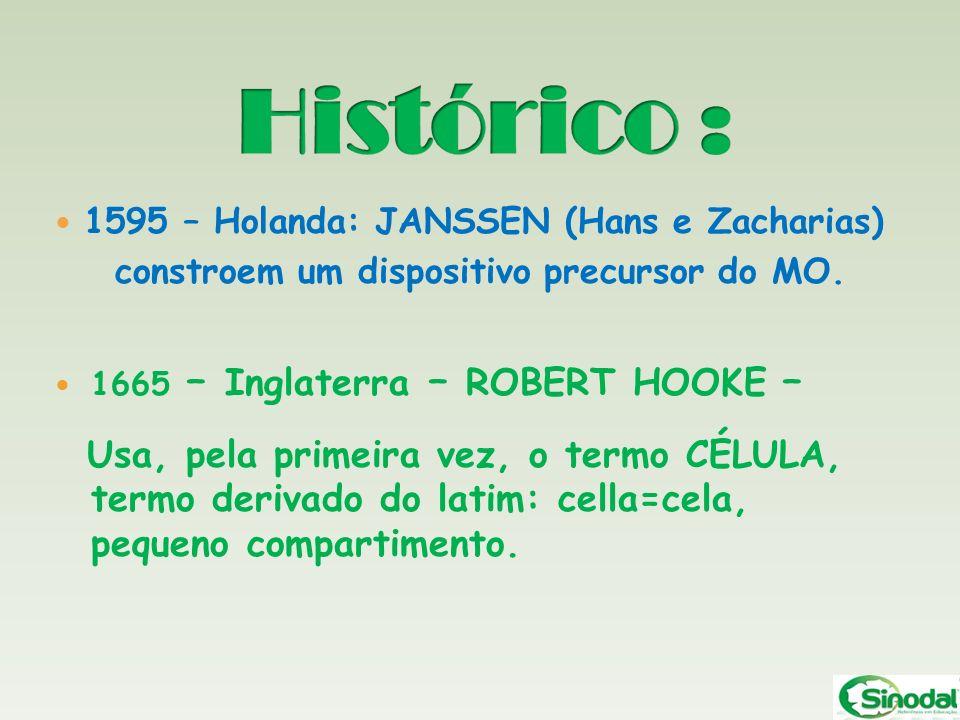 Histórico : 1595 – Holanda: JANSSEN (Hans e Zacharias) constroem um dispositivo precursor do MO. 1665 – Inglaterra – ROBERT HOOKE –