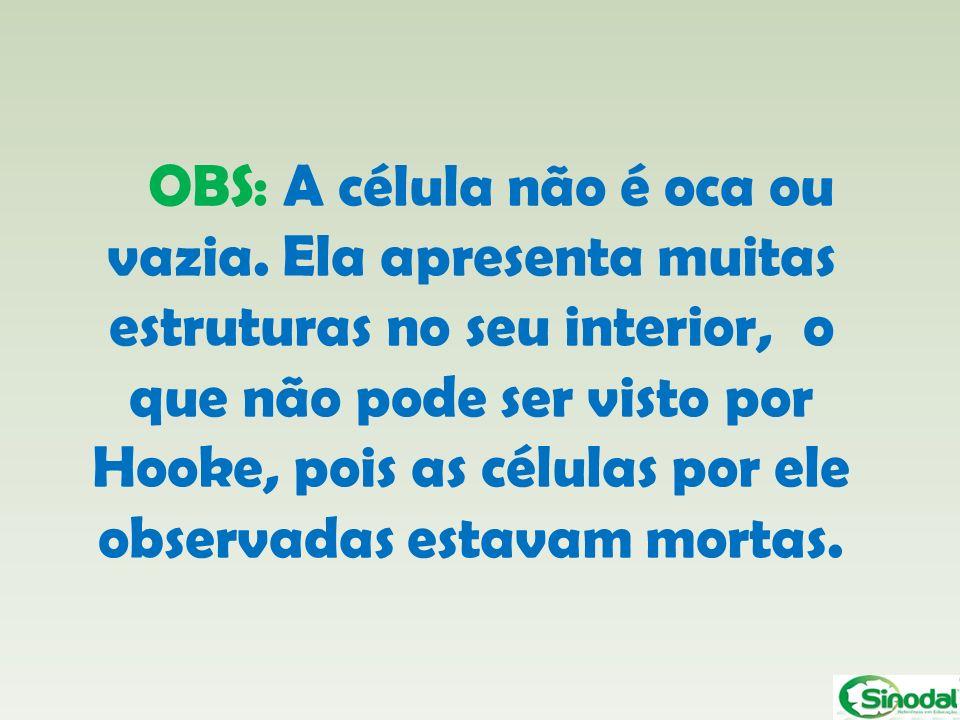 OBS: A célula não é oca ou vazia