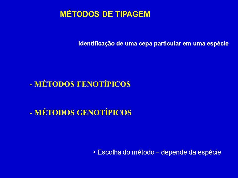 MÉTODOS DE TIPAGEM - MÉTODOS FENOTÍPICOS - MÉTODOS GENOTÍPICOS