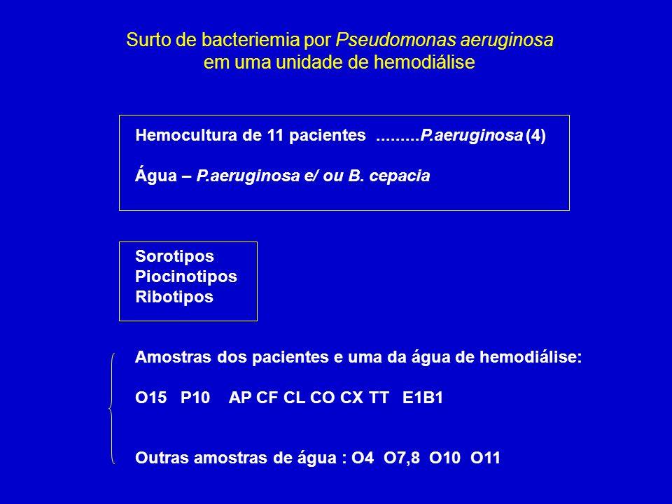 Surto de bacteriemia por Pseudomonas aeruginosa