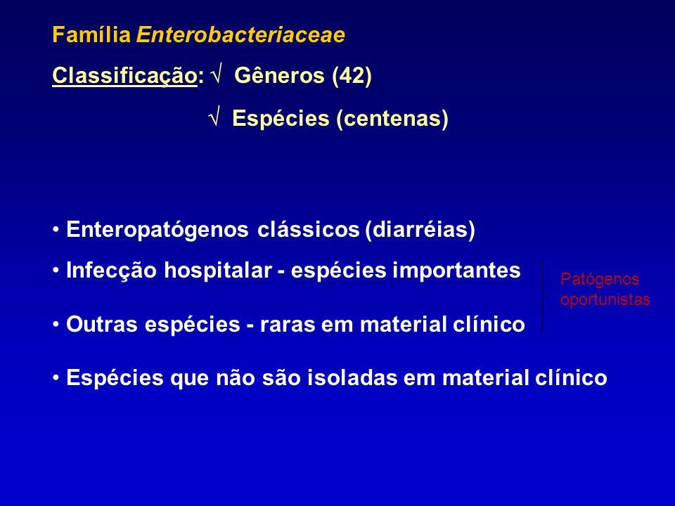 Família Enterobacteriaceae Classificação:  Gêneros (42)