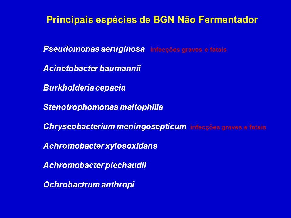 Principais espécies de BGN Não Fermentador