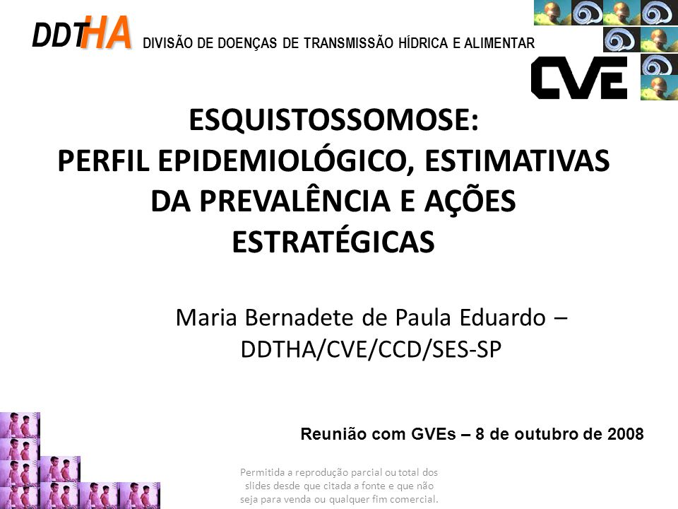 Maria Bernadete de Paula Eduardo – DDTHA/CVE/CCD/SES-SP