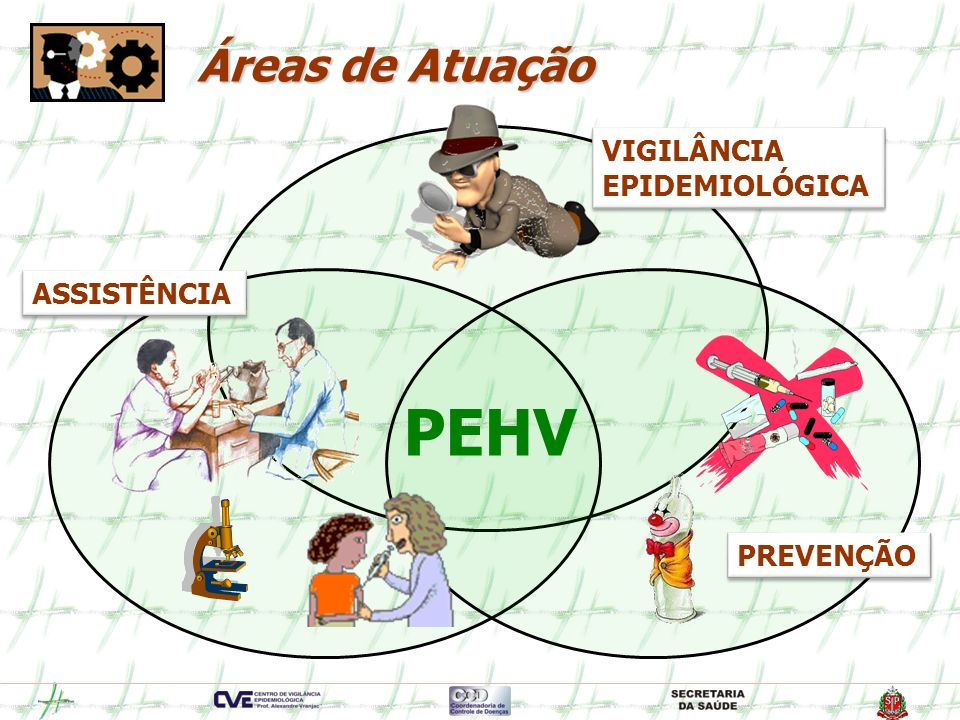 PEHV Áreas de Atuação VIGILÂNCIA EPIDEMIOLÓGICA ASSISTÊNCIA PREVENÇÃO