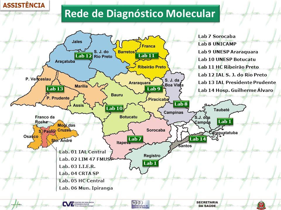 Rede de Diagnóstico Molecular