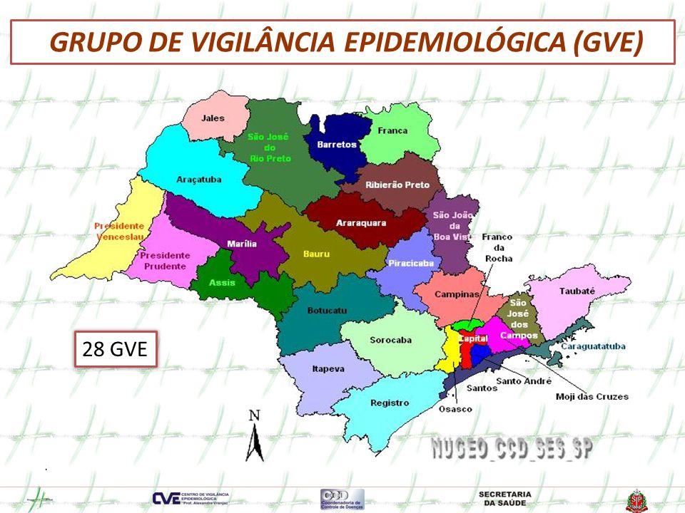 GRUPO DE VIGILÂNCIA EPIDEMIOLÓGICA (GVE)