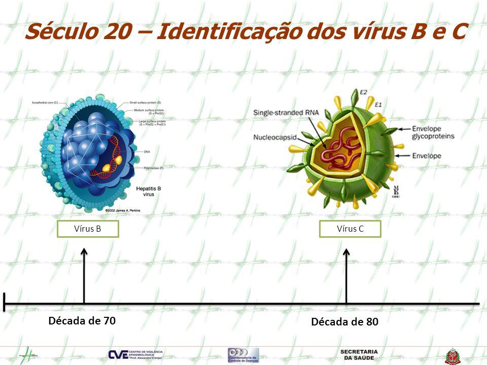 Século 20 – Identificação dos vírus B e C