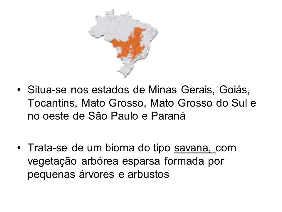 Situa-se nos estados de Minas Gerais, Goiás, Tocantins, Mato Grosso, Mato Grosso do Sul e no oeste de São Paulo e Paraná