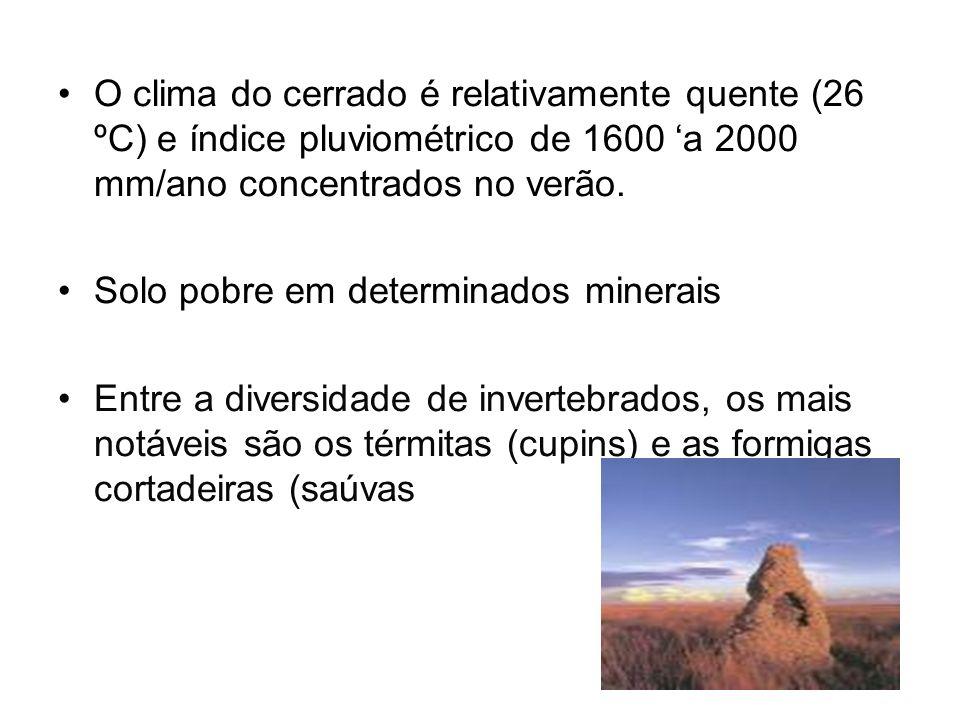 O clima do cerrado é relativamente quente (26 ºC) e índice pluviométrico de 1600 'a 2000 mm/ano concentrados no verão.