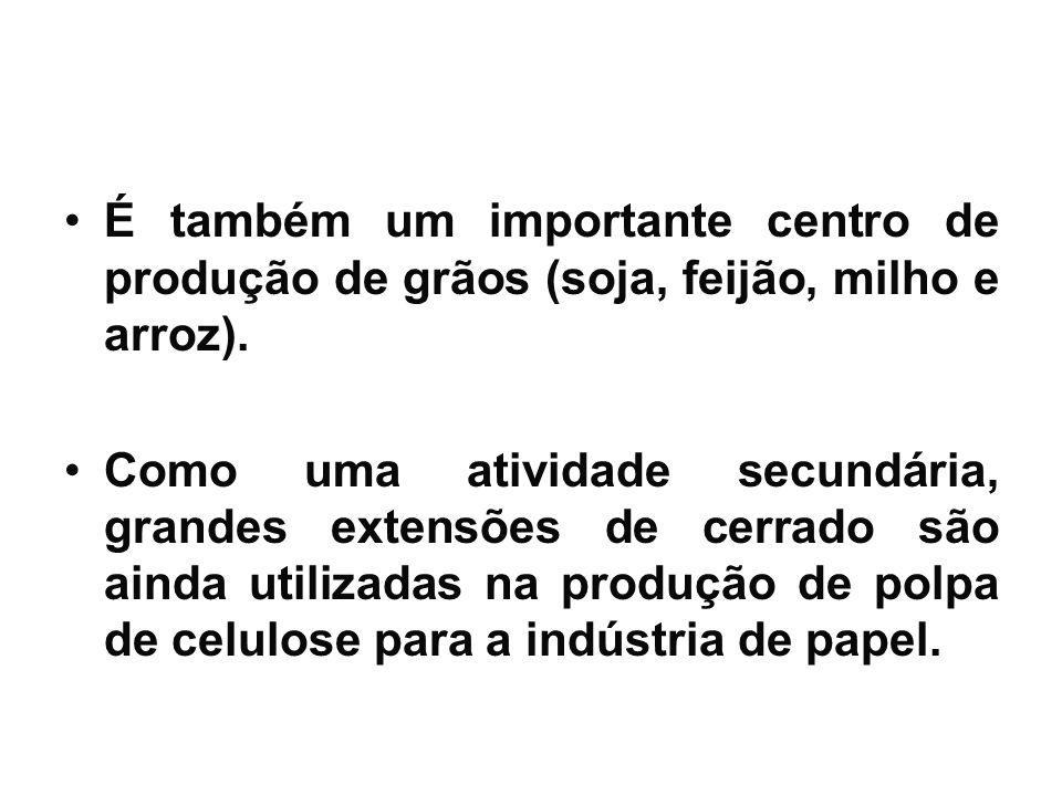 É também um importante centro de produção de grãos (soja, feijão, milho e arroz).