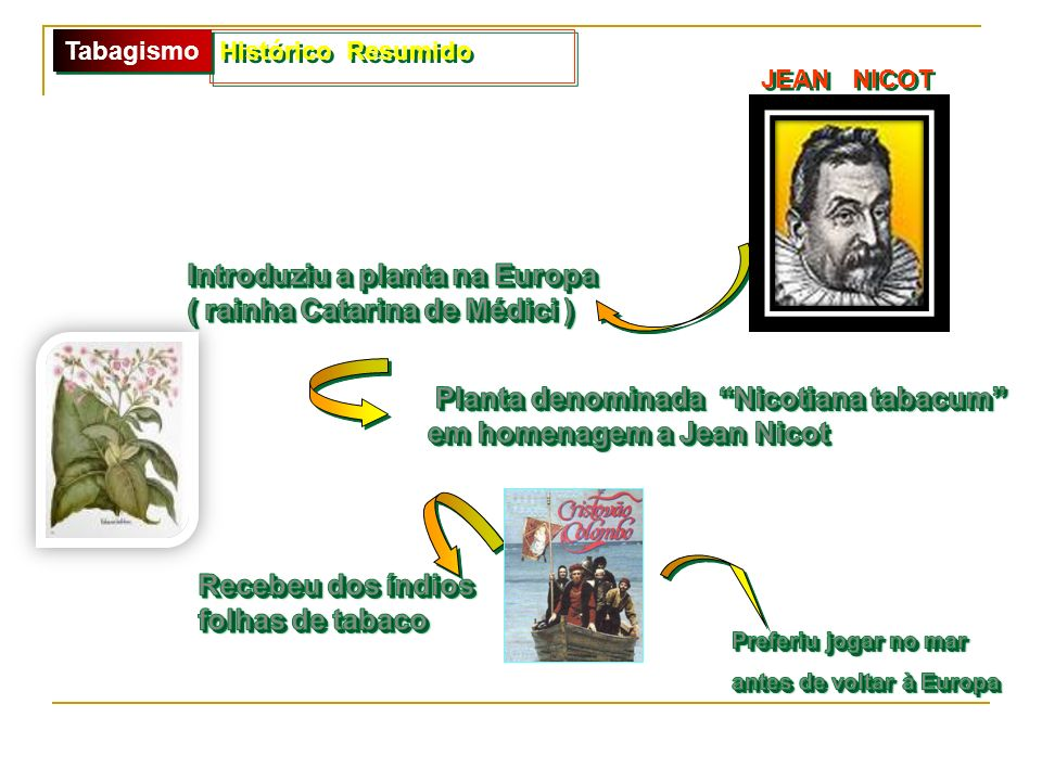 Introduziu a planta na Europa ( rainha Catarina de Médici )
