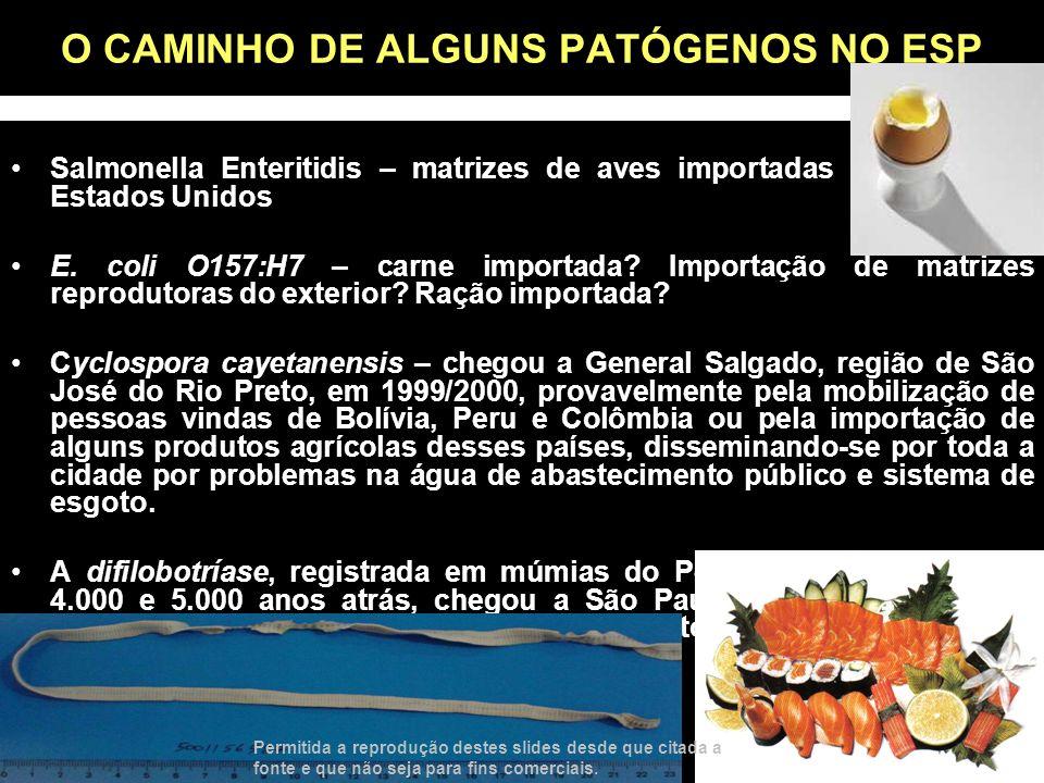 O CAMINHO DE ALGUNS PATÓGENOS NO ESP
