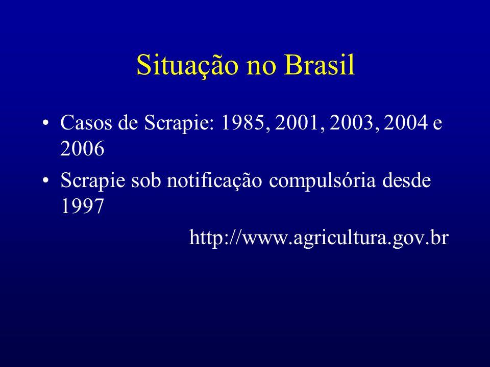 Situação no Brasil Casos de Scrapie: 1985, 2001, 2003, 2004 e 2006