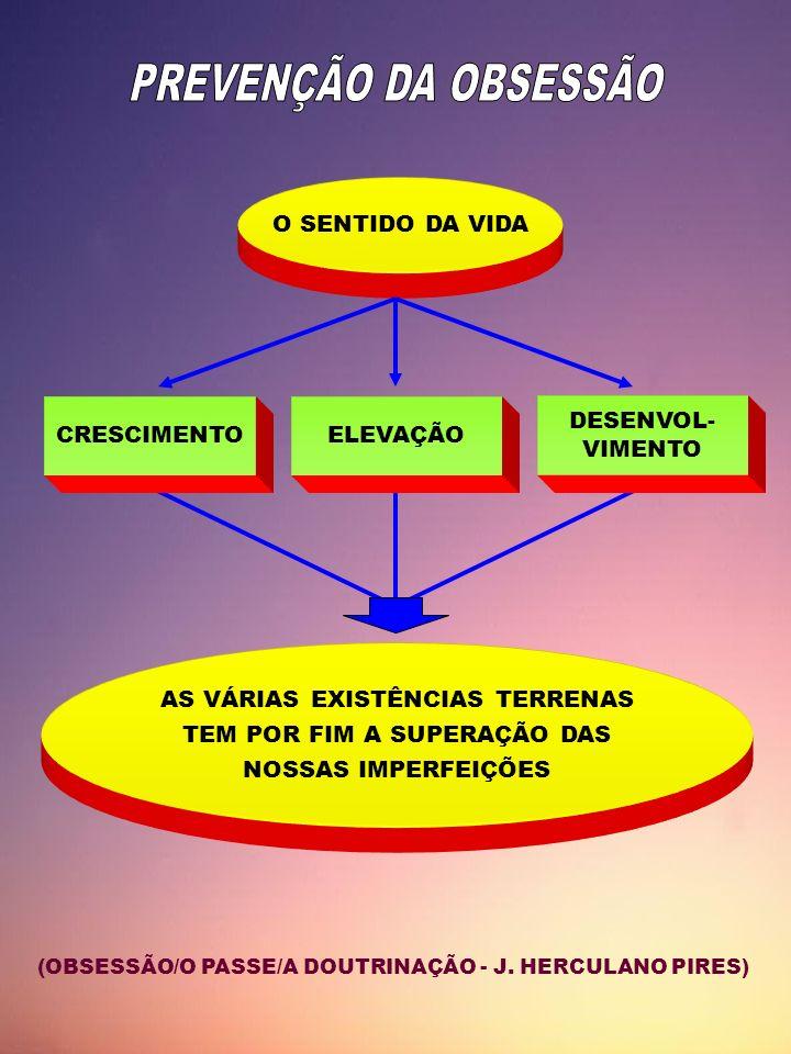 AS VÁRIAS EXISTÊNCIAS TERRENAS TEM POR FIM A SUPERAÇÃO DAS
