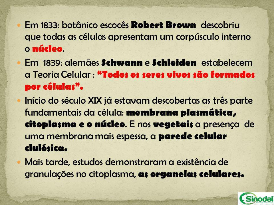 Em 1833: botânico escocês Robert Brown descobriu que todas as células apresentam um corpúsculo interno o núcleo.