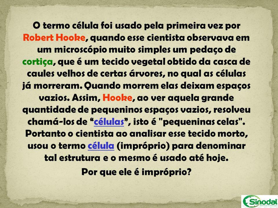 O termo célula foi usado pela primeira vez por Robert Hooke, quando esse cientista observava em um microscópio muito simples um pedaço de cortiça, que é um tecido vegetal obtido da casca de caules velhos de certas árvores, no qual as células já morreram. Quando morrem elas deixam espaços vazios. Assim, Hooke, ao ver aquela grande quantidade de pequeninos espaços vazios, resolveu chamá-los de células , isto é pequeninas celas . Portanto o cientista ao analisar esse tecido morto, usou o termo célula (impróprio) para denominar tal estrutura e o mesmo é usado até hoje.