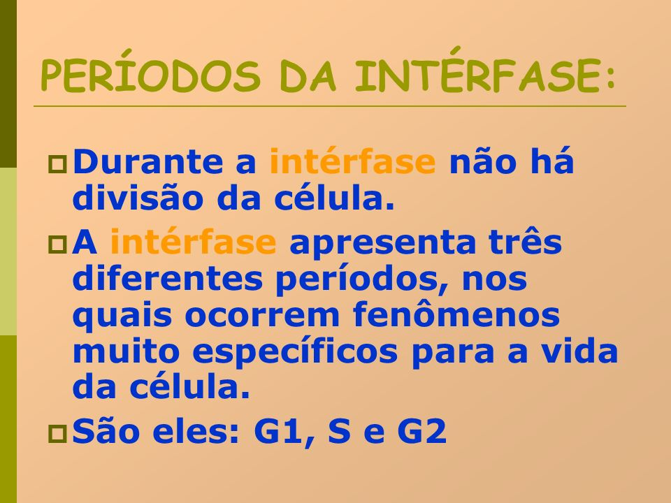 PERÍODOS DA INTÉRFASE: