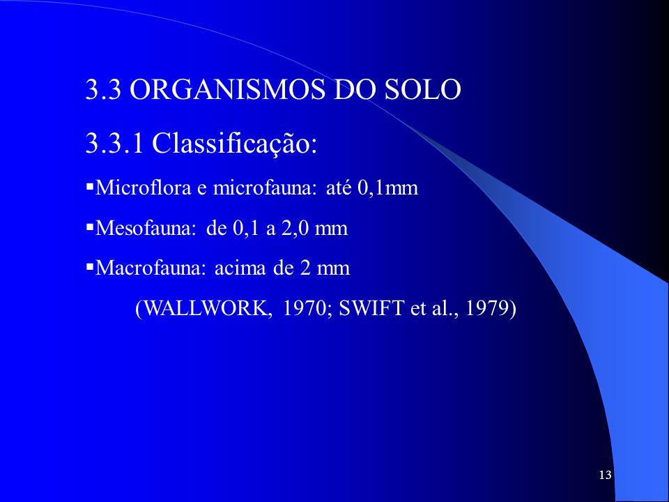 3.3 ORGANISMOS DO SOLO 3.3.1 Classificação: