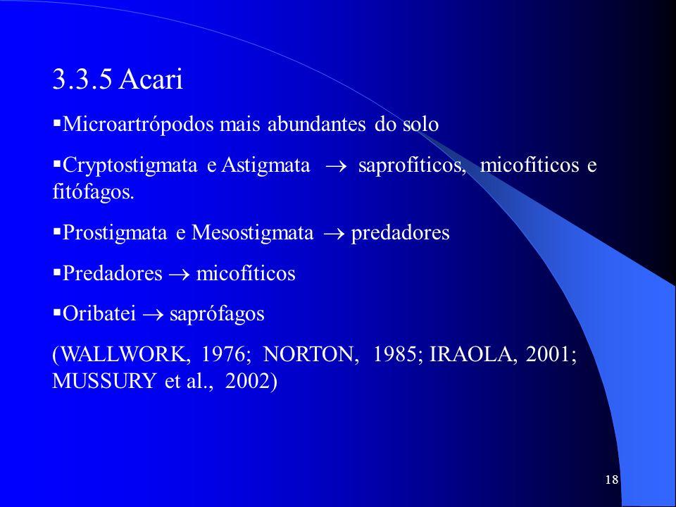 3.3.5 Acari Microartrópodos mais abundantes do solo