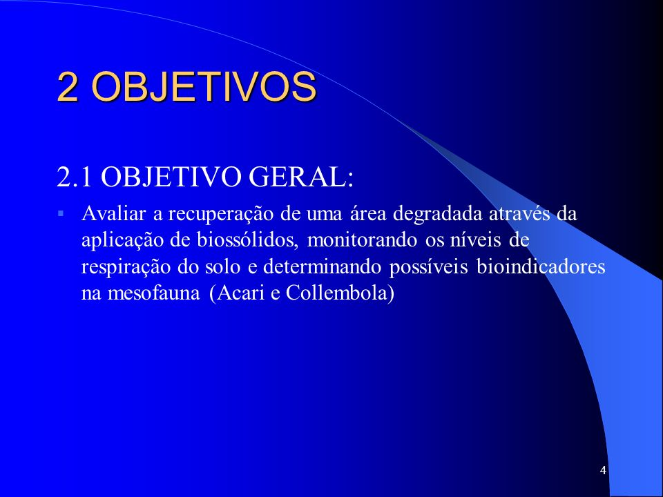 2 OBJETIVOS 2.1 OBJETIVO GERAL: