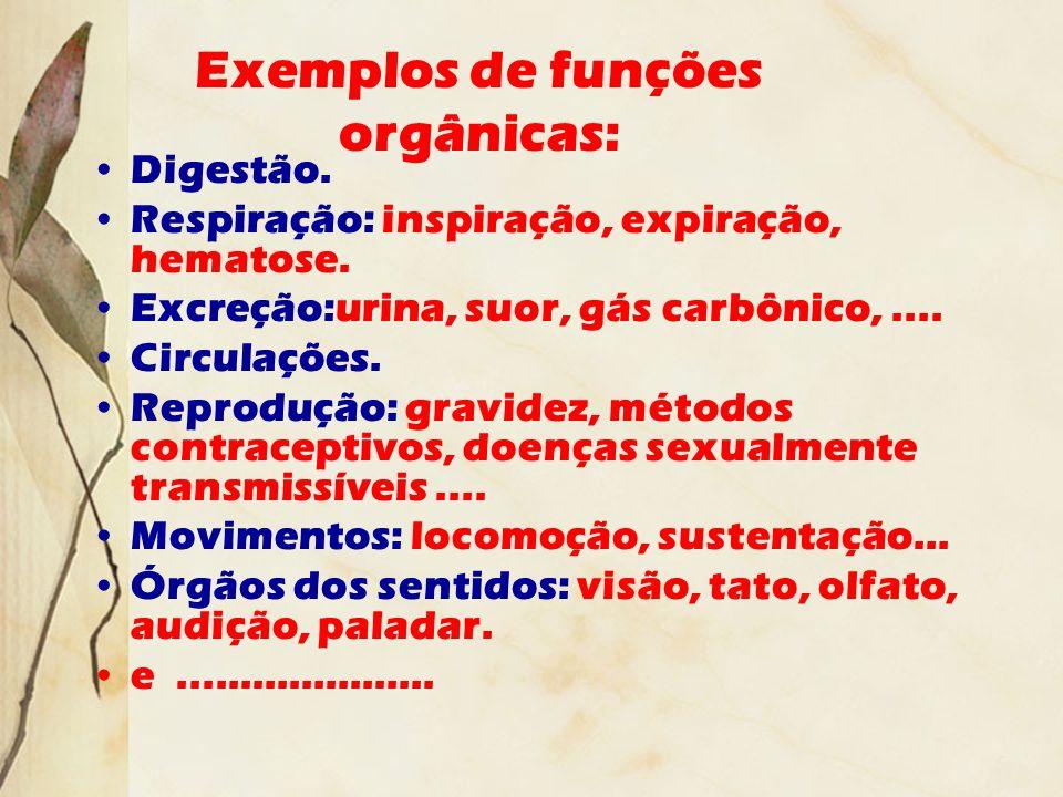 Exemplos de funções orgânicas: