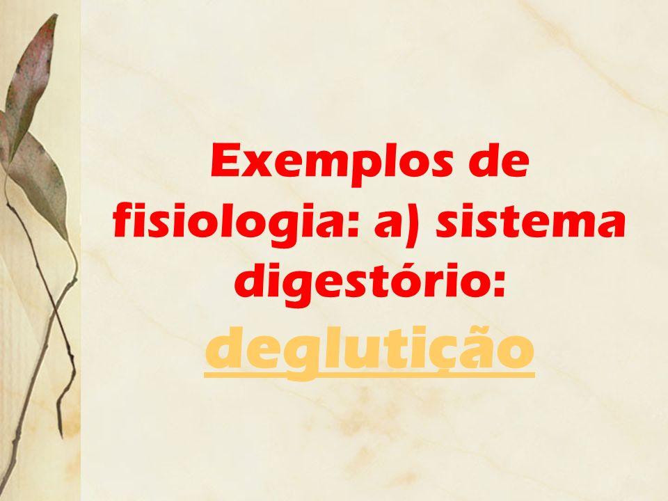 Exemplos de fisiologia: a) sistema digestório: deglutição