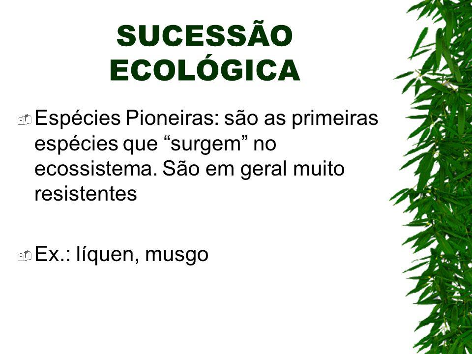 SUCESSÃO ECOLÓGICA Espécies Pioneiras: são as primeiras espécies que surgem no ecossistema. São em geral muito resistentes.