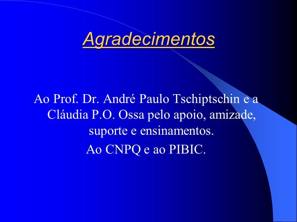 Agradecimentos Ao Prof. Dr. André Paulo Tschiptschin e a Cláudia P.O. Ossa pelo apoio, amizade, suporte e ensinamentos.
