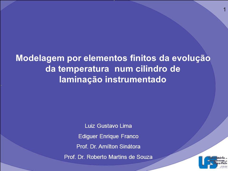 Modelagem por elementos finitos da evolução