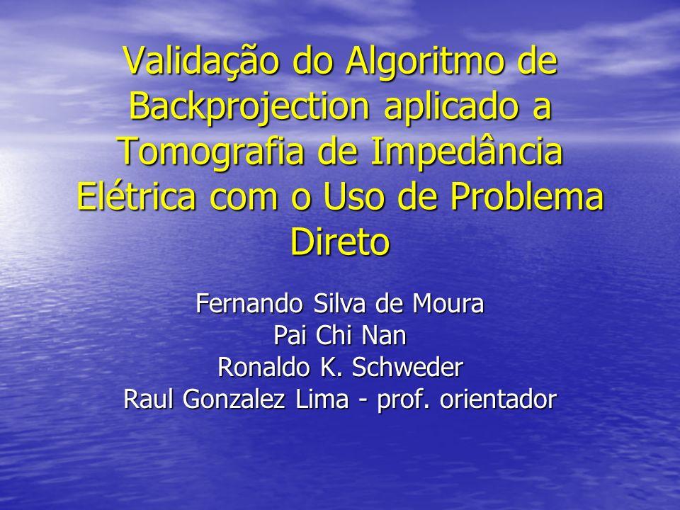 Validação do Algoritmo de Backprojection aplicado a Tomografia de Impedância Elétrica com o Uso de Problema Direto