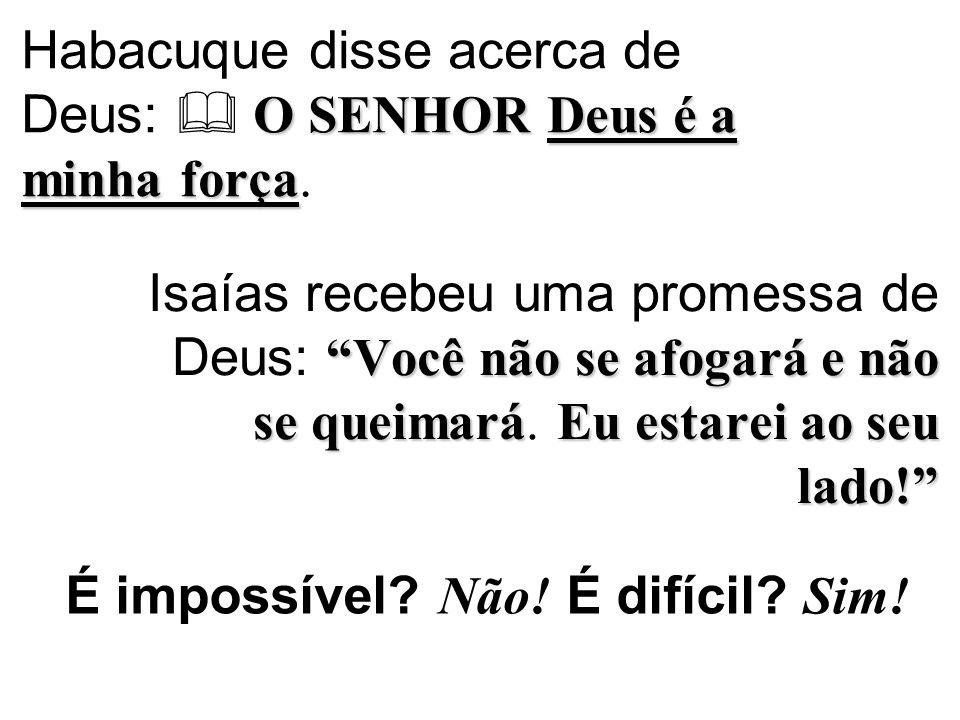 Habacuque disse acerca de Deus:  O SENHOR Deus é a minha força.