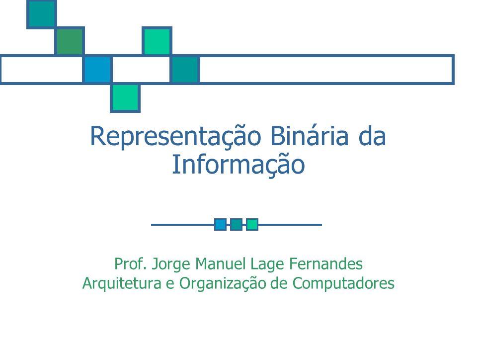 Representação Binária da Informação