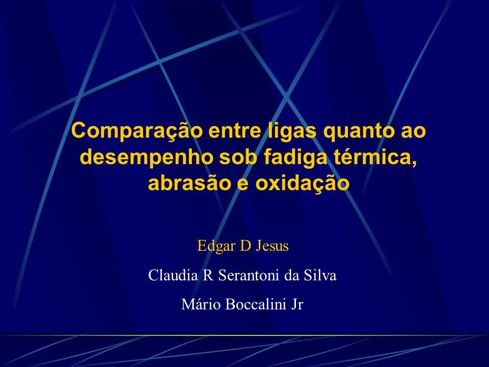 Claudia R Serantoni da Silva