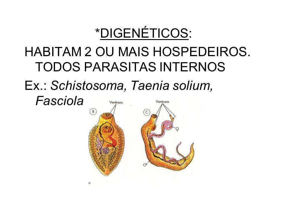 *DIGENÉTICOS: HABITAM 2 OU MAIS HOSPEDEIROS. TODOS PARASITAS INTERNOS.