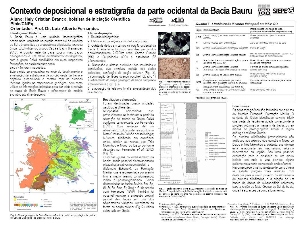 Contexto deposicional e estratigrafia da parte ocidental da Bacia Bauru